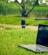 laptop_grass