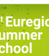 summer_school_flyer_for_recruiting_maastrichtu_online_deadline_7jun_verkleind.png