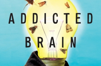 Book cover Memoirs of an Addicted Brain